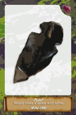 Flint card