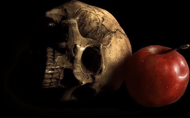 Skull and Apple Header