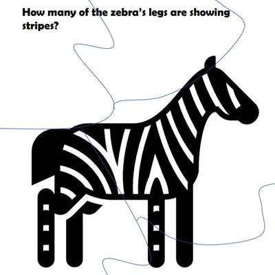 zoo-adventure-zebra